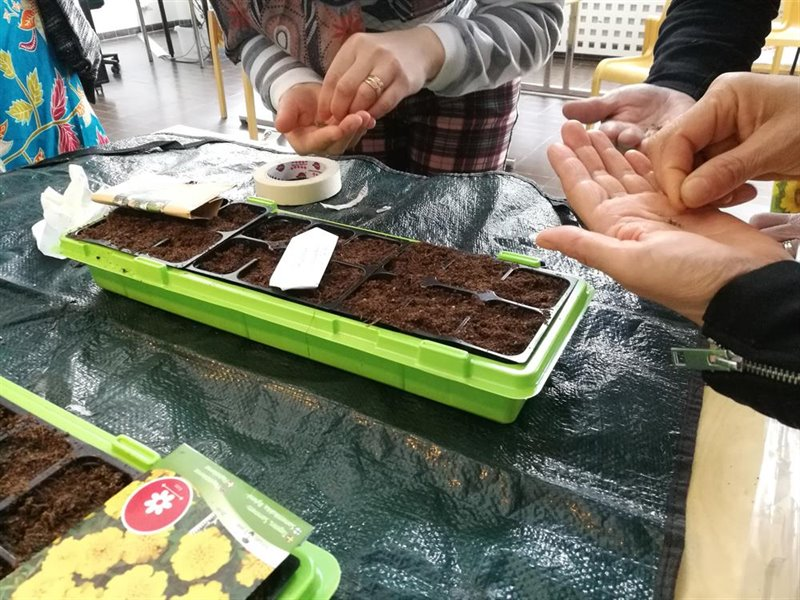 Planting a seed. Immigrant students learn to plant tomatoes on a language course at the Kaukametsä adult education centre in the Northern city of Kajaani. Photo: Anna Huusko.